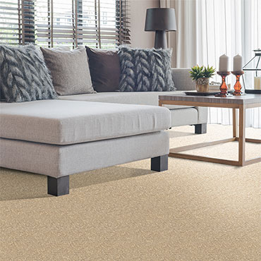 Phenix Carpet